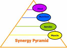 Synergy Pyramid